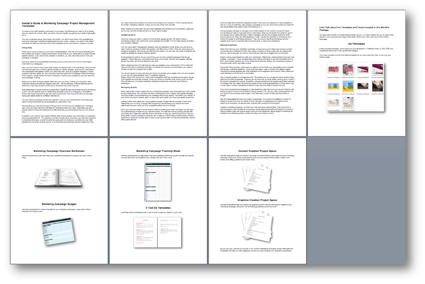 Marketing Campaign Project Management Templates User Guide
