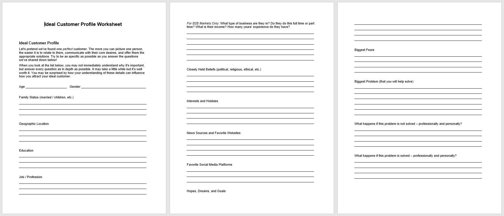 Ideal Customer PLR Worksheet